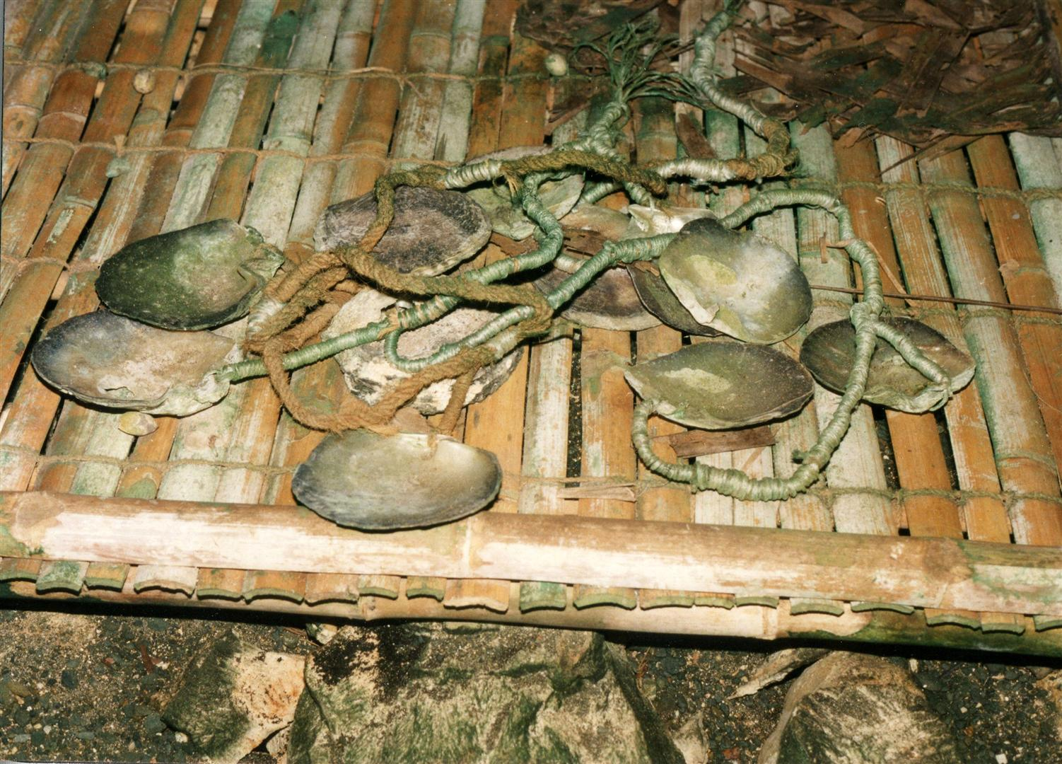 yar-Geld-aus-Perlmuttmuschelschalen (Copyright T.Lautz)