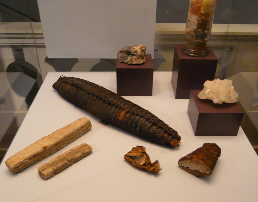 Vitrine Salz. Amole aus Äthiopien, Salzbarren der Baruya in Papua Neuguinea