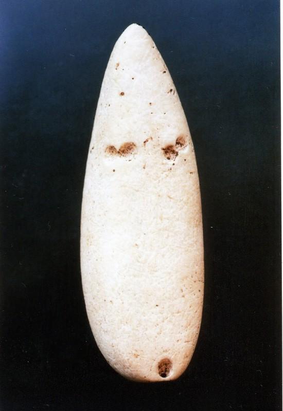 Abb. 5_ Slg Maaz aus Tridacna