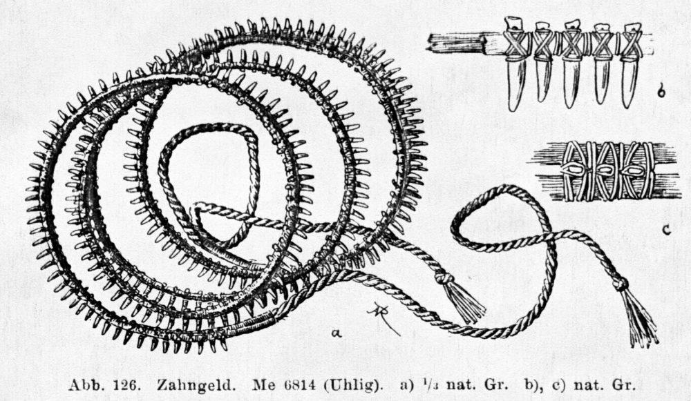 PGS 39,1 (2018) Tafel 5 Abb. 4: Herstellungstechnik eines imun aus Delphinzähnen.